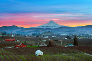 Day Trips from Oregon's Wine Country